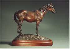'Safe Home'<br/>EQUINE ADVOCATES AWARD